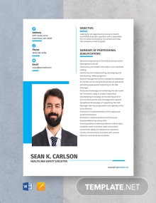 Free Health And Safety Executive Resume Template