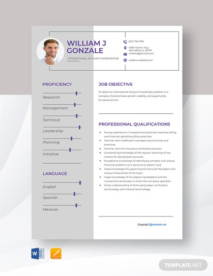Free International Account Coordinator Resume Template