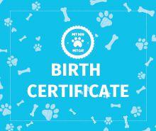 Free Pet Birth Certificate Template