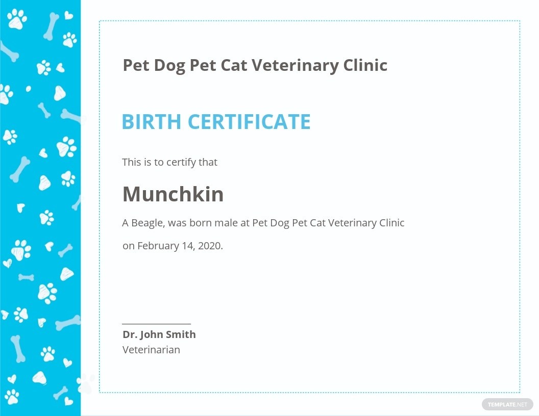 Sample Pet Birth Certificate Template