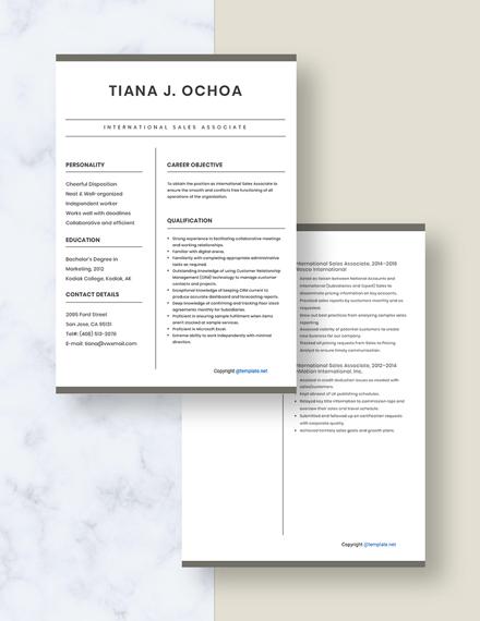 International Sales Associate Resume Download