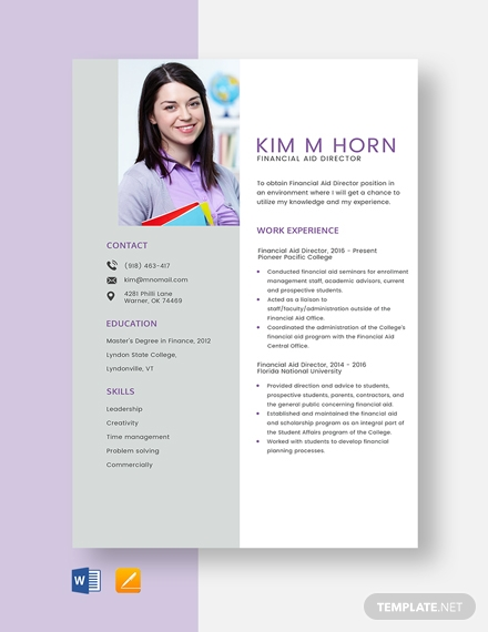 Financial Aid Director Resume Template