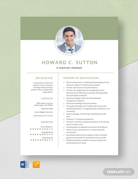 IT Assistant Manager Resume Template