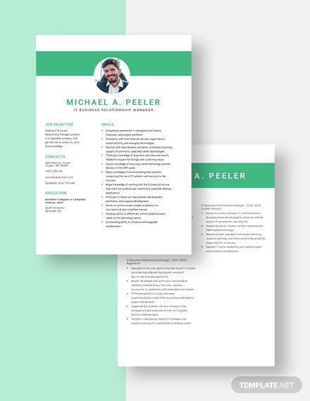 IT Business Relationship Manager Resume Download