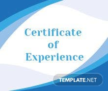 Free company experience certificate template in adobe photoshop free plumbing experience certificate template yadclub Image collections