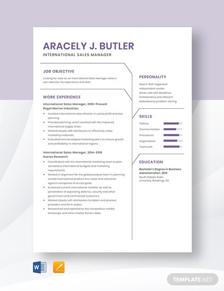 International Sales Manager Resume Template