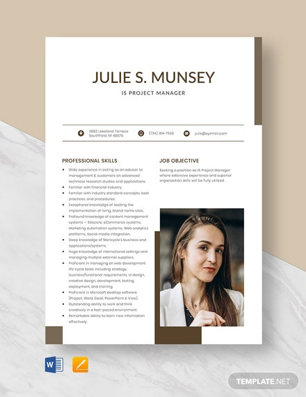 IS Project Manager Resume Template