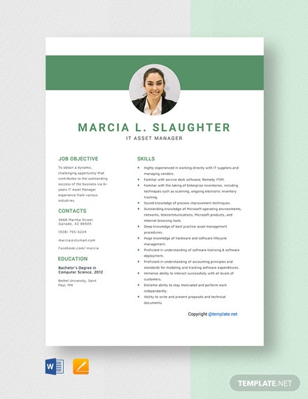 Free IT Asset Manager Resume Template