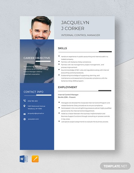 Free Internal Control Manager Resume Template