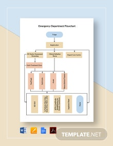 Emergency Department Flowchart Template