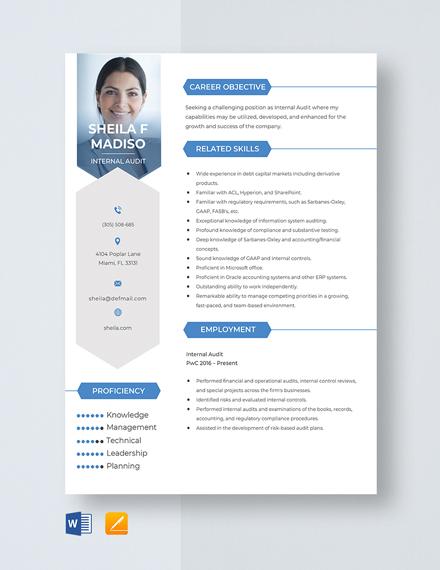 Internal Audit Resume Template