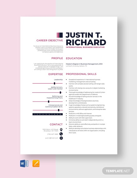 International Business Executive Resume Template