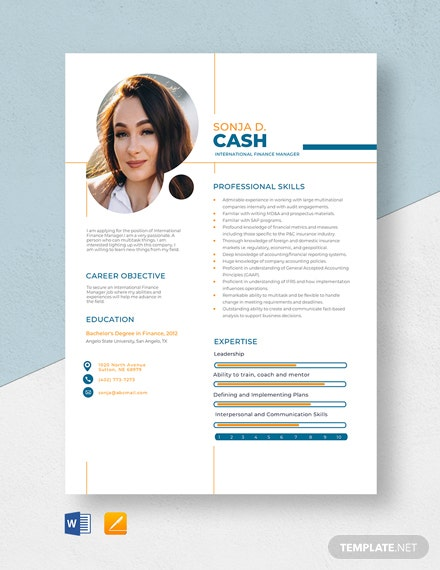 International Finance Manager Resume Template