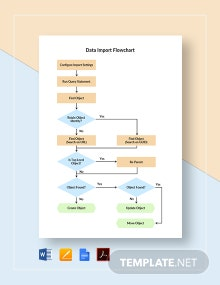 Data Import Flowchart Template