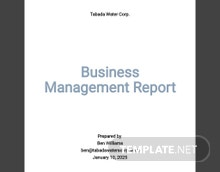 Free Business Management Report Template