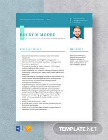 Interactive Account Manager Resume Template