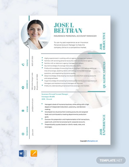 Free Insurance Personal Account Manager  Resume Template