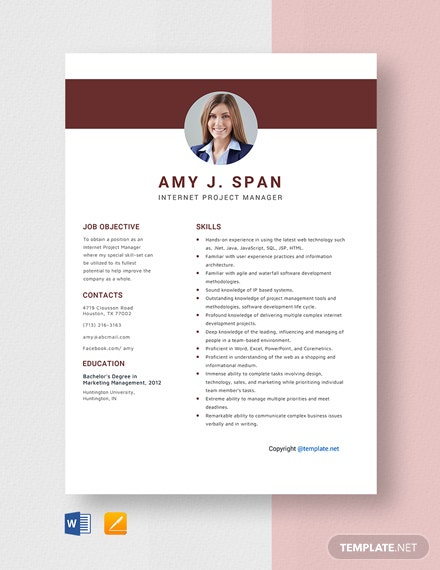 Free Internet Project Manager Resume Template
