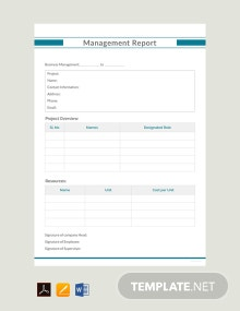 Free Management Report Example Template