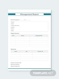 Management Report Example Template