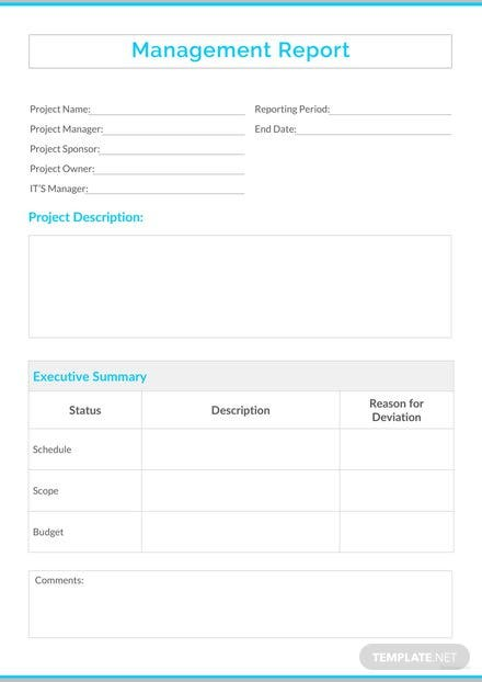 Management Report Sample Template