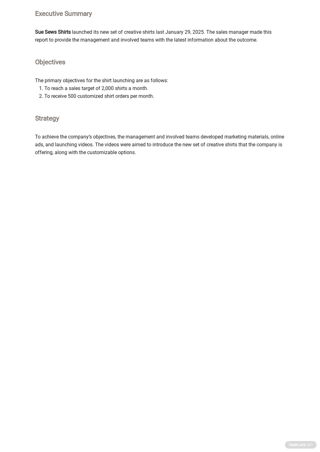 Free Sales Management Report Template 1.jpe