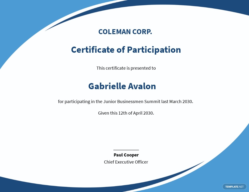 Free Program Participation Certificate Template