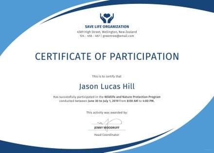 Free Program Participation Certificate Template