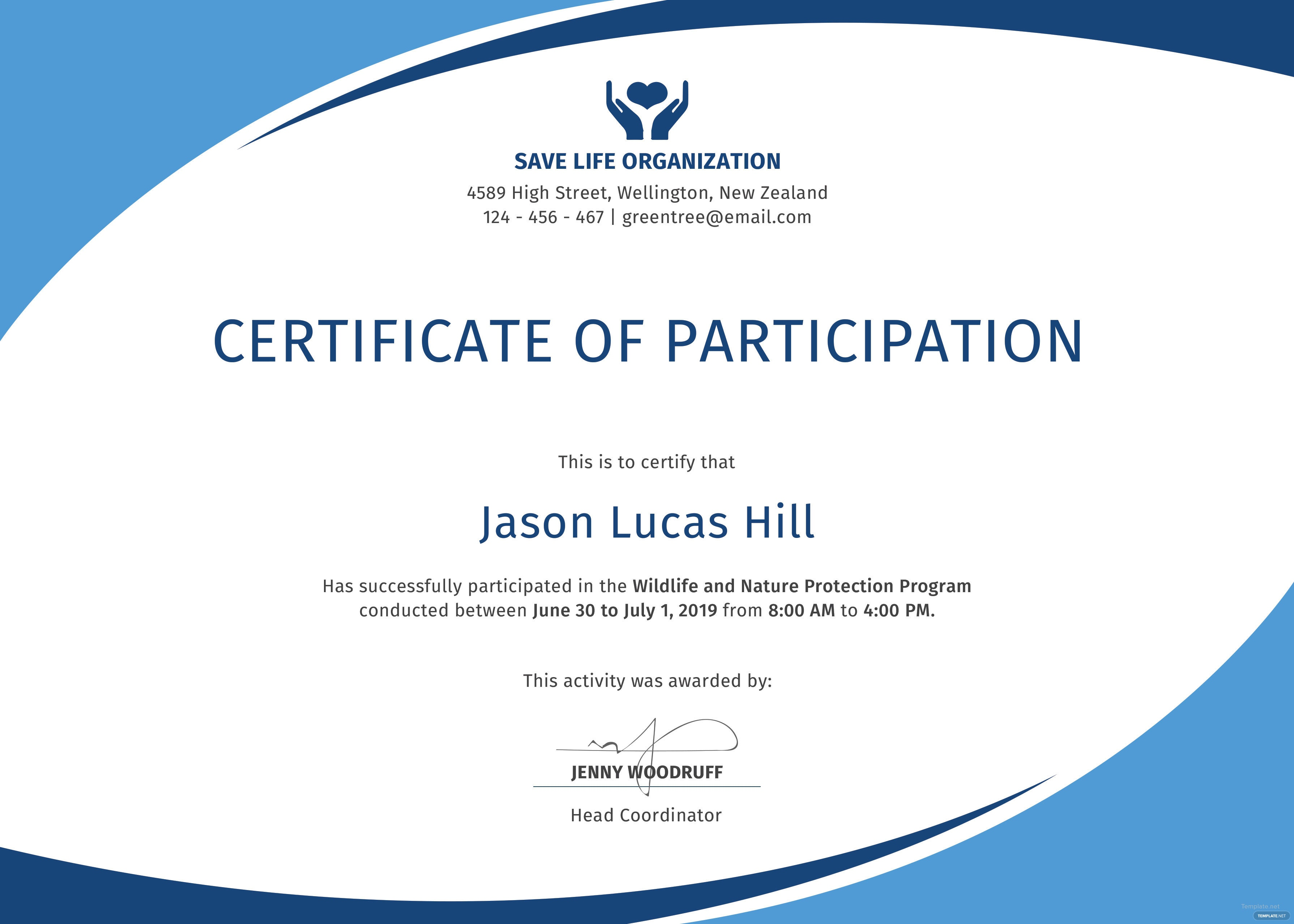 Certificate Of Participation Template Free Free Program Participation Certificate Template In PSD MS Word Publisher Illustrator