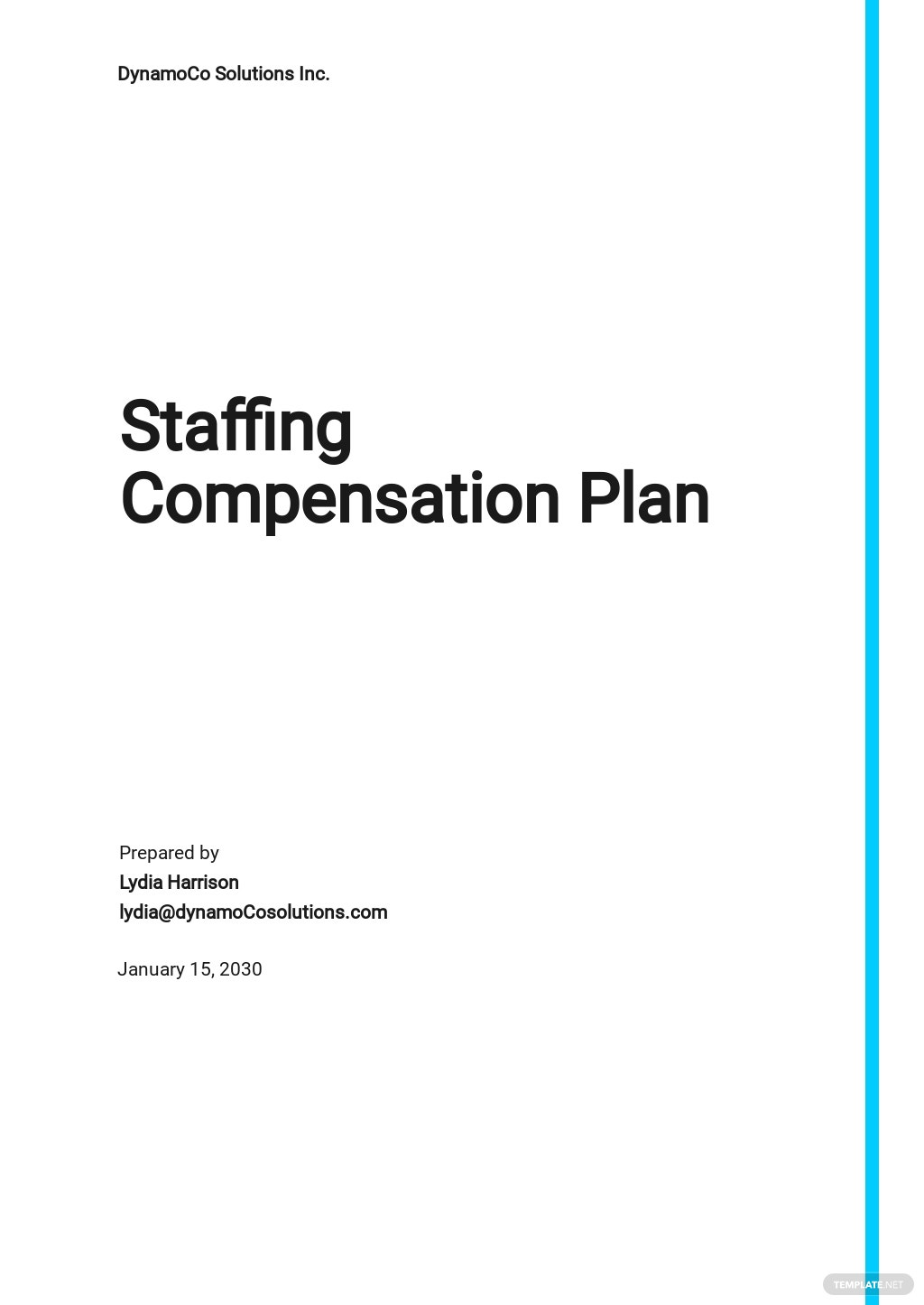 Staffing Compensation Plan Template