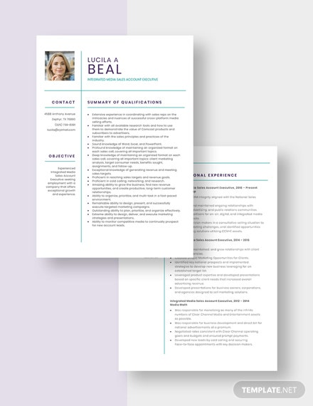 Integrated Media Sales Account Executive Resume Download