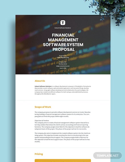 Free Sample Software Proposal Template