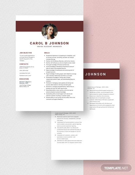 Inside Account Manager Resume Download