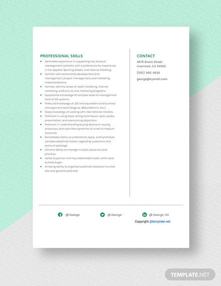 Inside Key Account Manager Resume Template