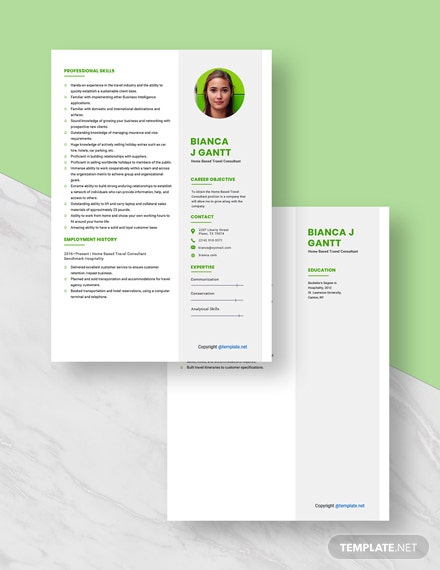 HomeBased Travel Consultant Resume Download