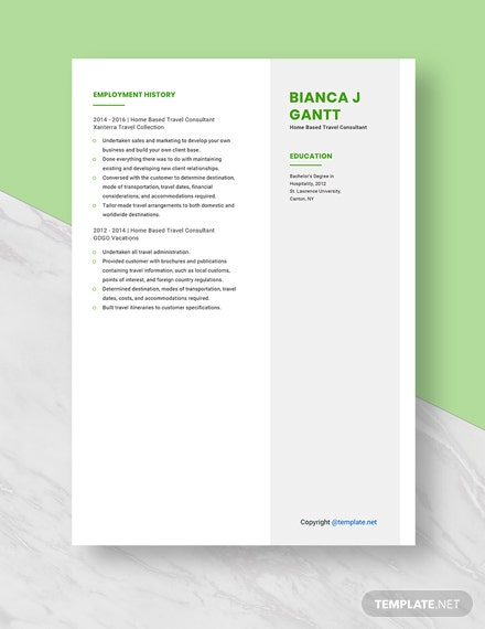 HomeBased Travel Consultant Resume Template