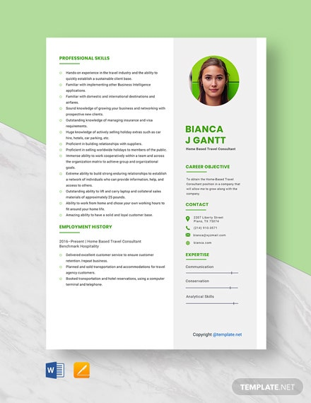 HomeBased Travel Consultant Resume