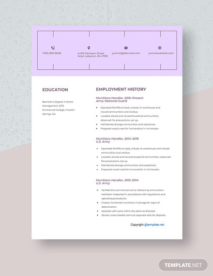 Munitions Handler Resume Template