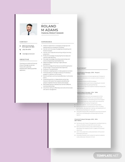 Financial Product Manager Resume Download