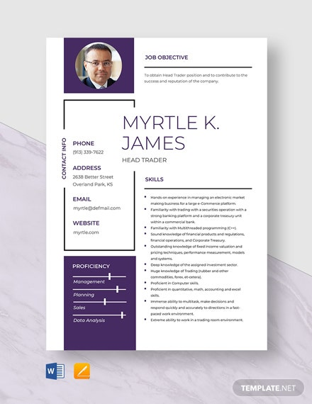 Head Trader Resume Template