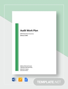 Audit Work Plan Template