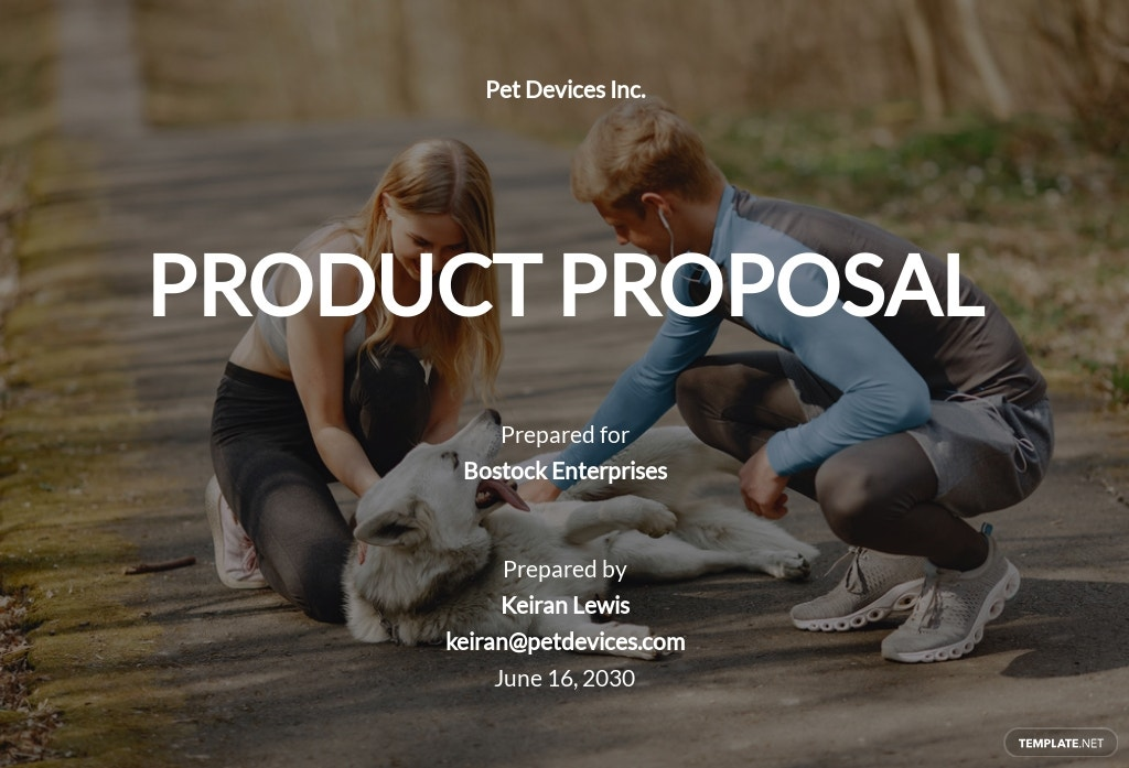 Business Product Proposal Template