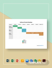 Software Product Roadmap Template