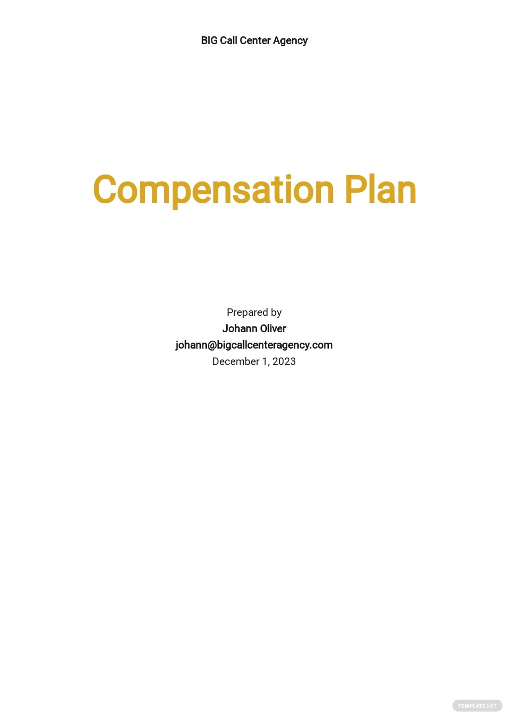 Sample Compensation Plan Template