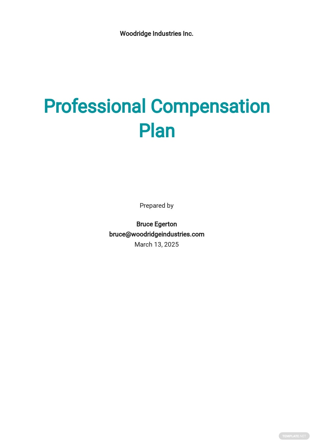 Professional Compensation Plan Template