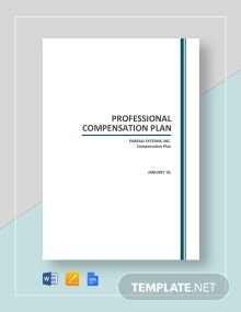 Free Professional Compensation Plan Template