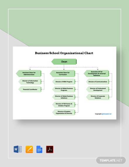 Business School Organizational Chart Template