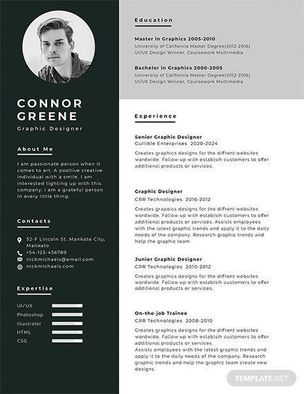 free experience resume template - Creative Resume Templates Free Download