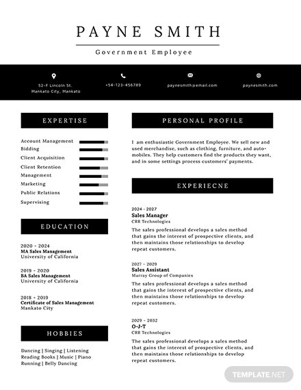 Free Official Resume Template