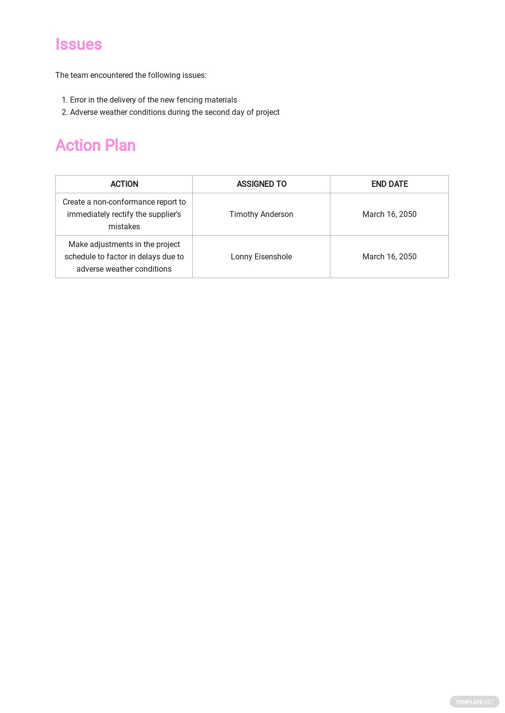Daily Construction Activities Report Template 3.jpe